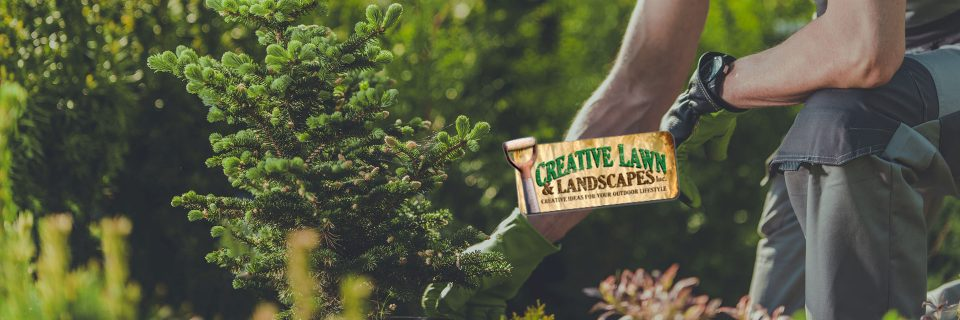 Your lawn and landscape the way that it should be.